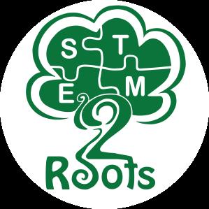 stem 2 roots copy